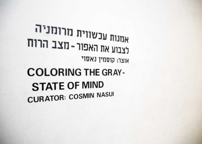 colouring-the-grey-state-of-mind-artists-house-tel-aviv-2