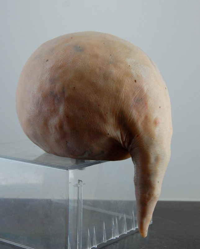 Felix Deac, Eidetic 1, 2011, Sculpture Mixed Media 7.9 x 5.5 x 6.7 inch (HxWxD)
