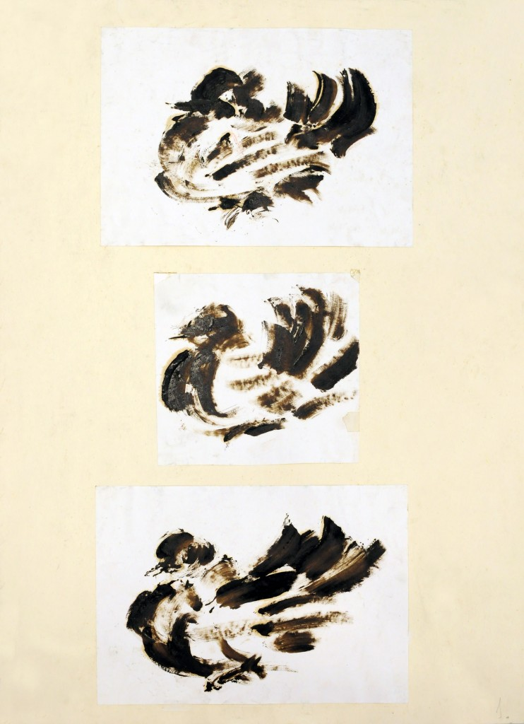 Mircea Suciu, Three doves, 1996, ink on paper, 70 x 50 cm