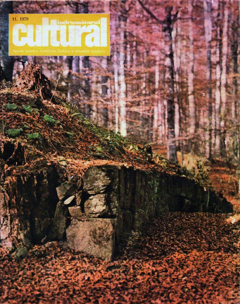 Indrumatorul cultural nr 11 1979