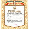 Premiul I Traian Cosovei, Cintarea Romaniei, 1989
