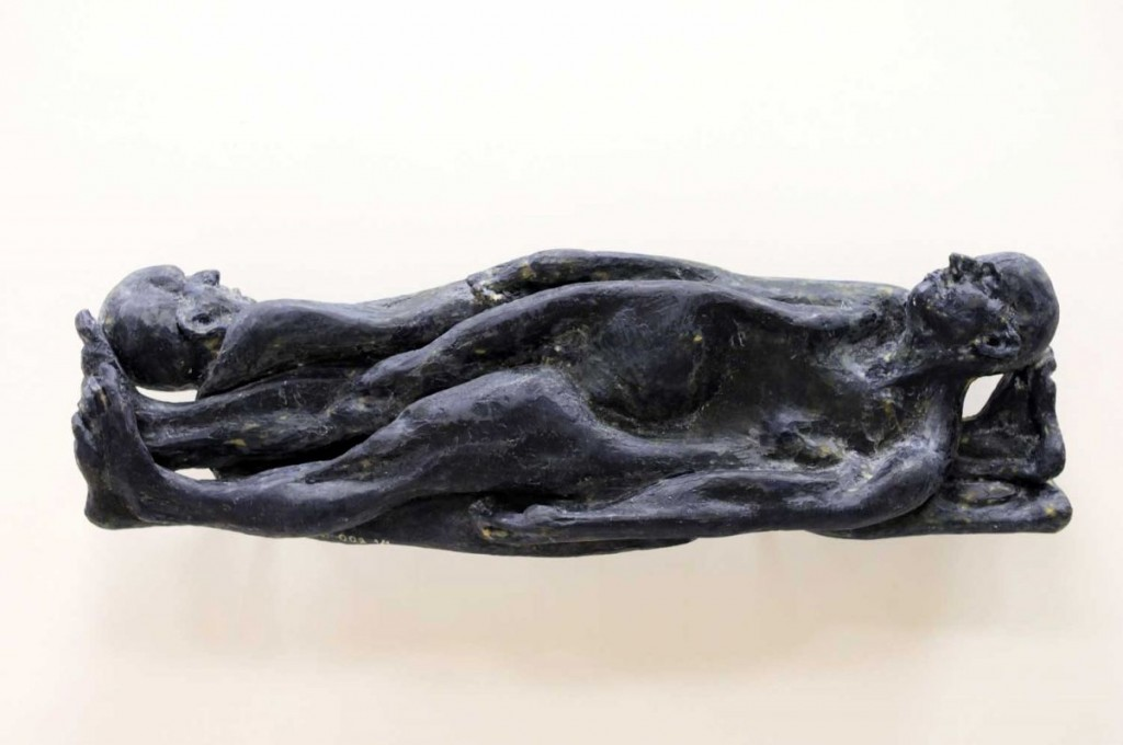 Catalin Badarau, Me and my double, 2008, Sintetic resin, fibre glass, 45 × 90 × 25 cm