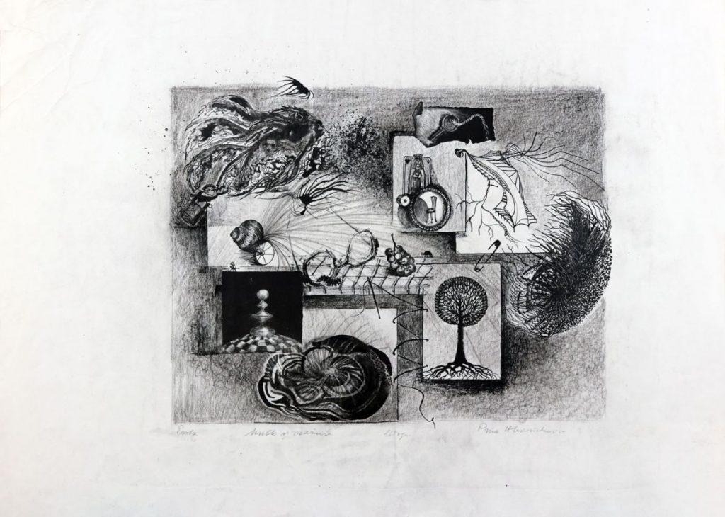 Puia Hortensia Masichievici, Multe și mărunte, litografie, probă, 46x64 cm