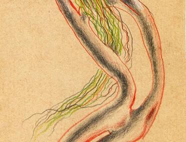 Hedda Sterne, Theodore Brauner, Medi Wechsler Dinu, Cadavre exquis 228, 1930-1932, pastel, pen and crayons on paper, 11x31,5 cm