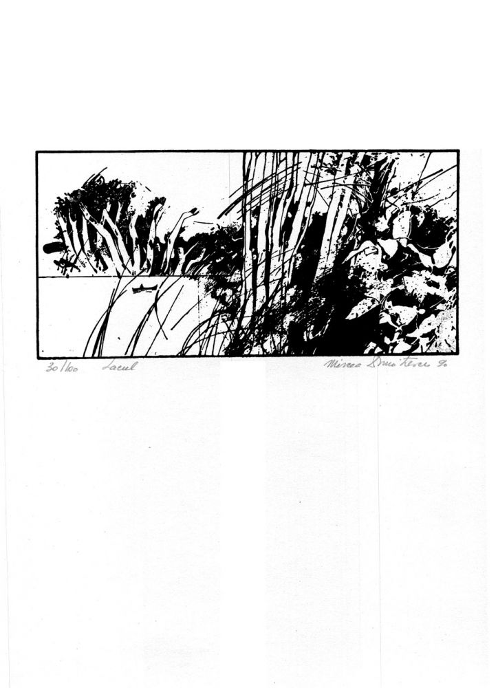 Mircea Dumitrescu, Lacul, 30from100, 1990, 51x37 cm