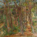 Pictori comentaţi de Petre Oprea Muzeul Naţional de Artă al României - Muzeul Colecţiilor