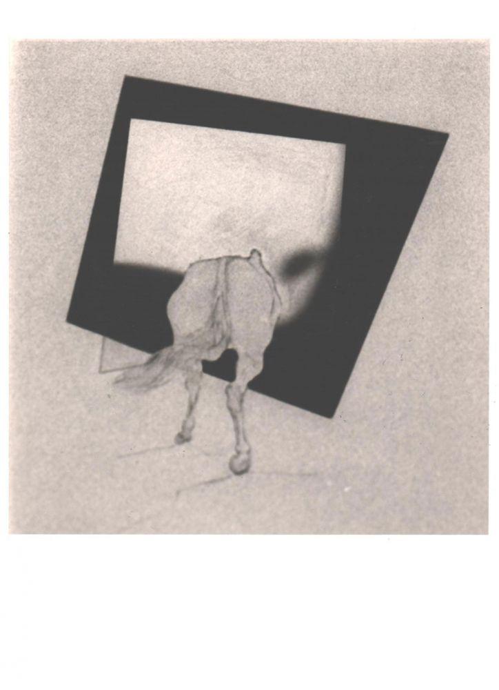 Pavel Ilie, Fara titlu, 18x12,5 cm, fotografie alb-negru, semnata pe spate